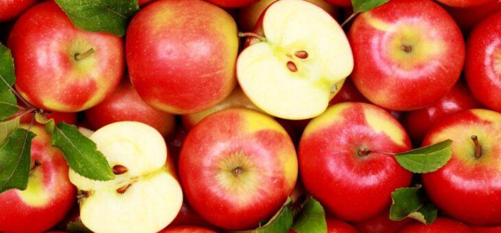 Конкурс творческих работ «Яблочный спас»